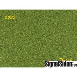 Naturex F - medel - aspgrön [2822]