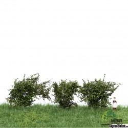 Buskar 4-6cm Normalgrön [50-3002]