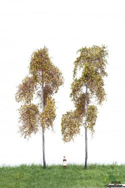 Björk Höst 18-22cm 2-pack [52-2313]