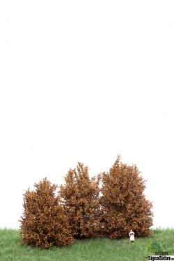 Höga Buskar 10-12cm Torkade [50-4006]