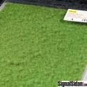 Gräs - Fint - Gräsgrönt [5953]