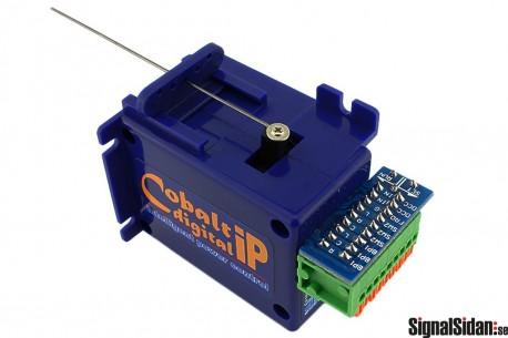 Cobalt Växelmotor CBdigital [DCP-CB1DiP]