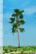 Tall 18-22cm [51-4304]