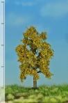 Ek höstfärger 12-16cm [52-2203]