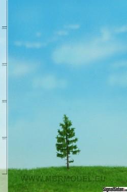 Skogsgran 6-10cm [51-4105]