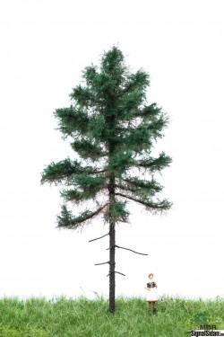Gran 12-16cm [51-4201]