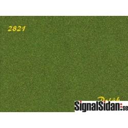 Naturex F - fin - aspgrön [2821]