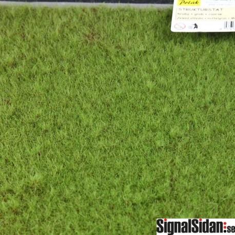 Gräs - Grovt - Medelgrönt [5964]