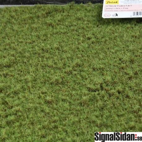 Gräs - Fint - Torkat [5959]