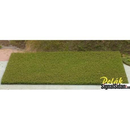 Fält - Grön [5811]