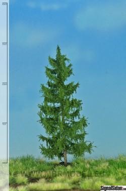 Gran 12-16cm [51-4206]
