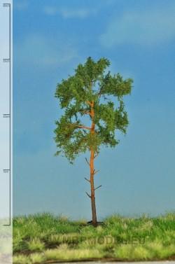 Tall 12-16cm [51-4204]