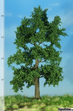 Ek 18-22cm [51-2303]